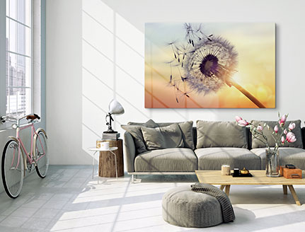 living room acrylic dandelion